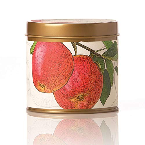 Rosy Rings Signature Tin - Spicy Apple