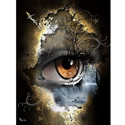 CHJTKDT Kit De Pintura De Diamante 5D Diy Eye Falls Cristales Para Manualidades Kit De Pintura De Diamante Diamond Painting Decoración Del Hogar 40 * 60cm