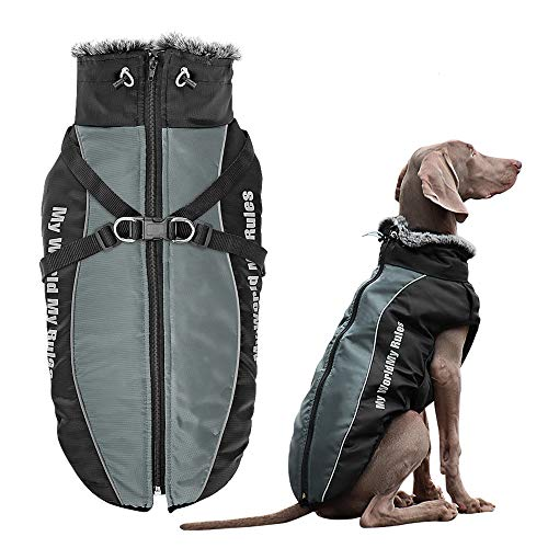 Didog Waterproof Dog Winter Jackets,Cold Weather Dog Coats with Harness & Furry Collar,Easy Walking & Soft Warm Sports Clothes Apparel for Medium Large Dogs,Gary