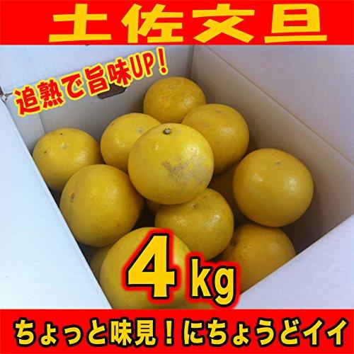 追熟で旨味UP! ご家庭用訳あり土佐文旦 サイズS〜2L(4kg)高知県産2月中旬より出荷開始です!
