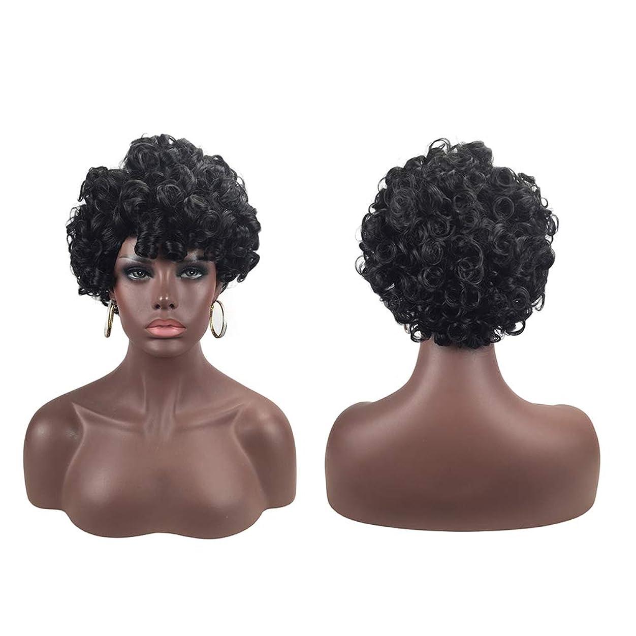 わずかに施設代替女性のファッション短い巻き毛のかつらの顎の長さローズネットカールかつら自然な絶妙なかつらカバー(9959)