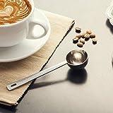 Cuchara de acero inoxidable JJOnlinestore, medidora de café, para especias en polvo, frut...