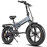 20 Zoll Fat Tire Elektro Mountainbike 750W Elektrofahrrad Klapprad für Erwachsene - 45 km/h & 80 km Kilometerstand - eBike Stadt/Schnee/Strand (Grau)