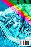 Zoom IMG-1 tutti amano i gatti il