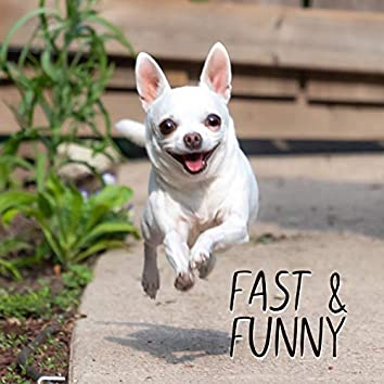 Fast and funny