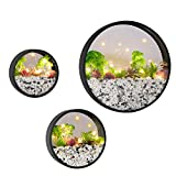Modern Round Glass Wall Planter , 3 Pack Set Wall Planters with LED Light String , Circle Iron Succulent Planter for Herb,Small Cactus Perfect for Balcony , Room and Patio Decor (Black)