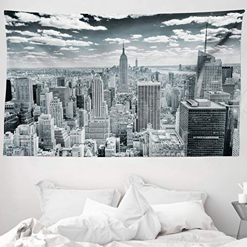 ABAKUHAUS New York Wandteppich und Tagesdecke, Manhattan Städtische Landschaft, aus Weiches Mikrofaser Stoff Klare Farben ohne verblassen Druck, 230 x 140 cm, Grau