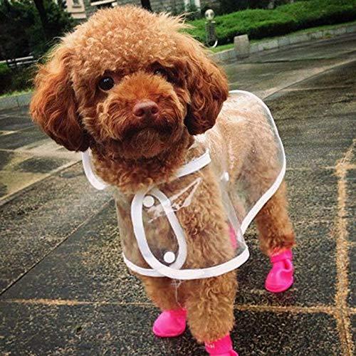 Tuzi Qiuge Gummistiefel wasserdichte Regen Schuhe for reizenden Haustier-Hundeschuh Welpen Süßigkeit-Farben-M, Größe: 5,0 x 4,0 cm, Werkzeuge, Sicherheit, ungiftige (Color : Purple)
