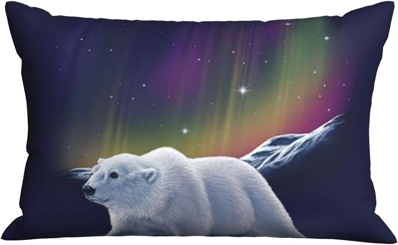 Northern Lights Popular brand Polar Bear Soft Pillow X 20 Rectangle 30 I Super beauty product restock quality top Cover