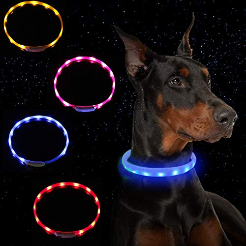 Collar de perro impermeable con luz LED recargable por USB (2 piezas). El collar de silicona brillante para mascotas puede mejorar la vista y la seguridad de las mascotas. Colgante brillante gratis