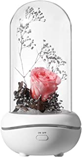 NovoLido Night Light Flower Rose Lamp, Aroma Diffuser Lamp with Night Light, Rechargeable and Quiet Essential Oil Aromatherapy Diffuser, One Button Eternal Rose Lamp for Decoration (Pink Rose)