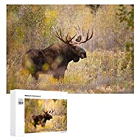森の中の野生動物ムーススタン 300ピースのパズル木製パズル大人の贈り物子供の誕生日プレゼント