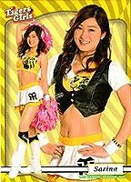 BBM2017 プロ野球チアリーダーカード-舞- レギュラーカード No.舞68 Sarina (T)
