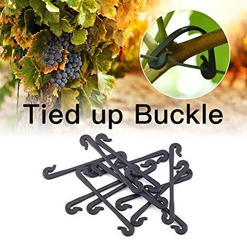 chivalrylist druivenkabelbinder ondersteuning tuingereedschap plantenwijnsluiting gebonden gesp haak druif