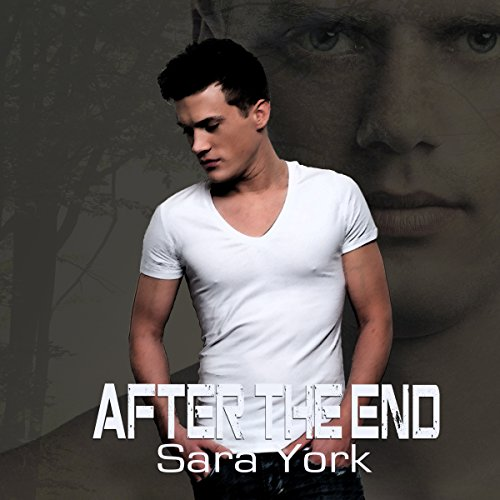 After the End  By  cover art