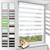 Zarnan Doppelrollo Klemmfix 80x120cm(BxH) Weiß Sichtschutz,Rollos für Fenster Tür ohne Bohren Blickdicht und Sonnenschutz,Duo Rollo Fensterrollo innen Wandmontage auch möglich
