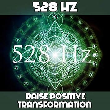 528 Raise Positive Transformation