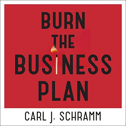 Burn the Business Plan cover art