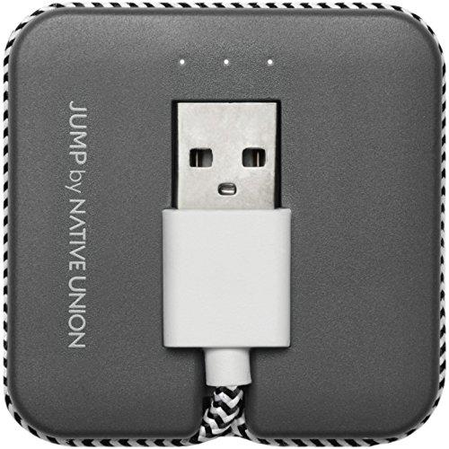 Native Union 3m Libre de enredos Lightening Cable de cinturón–Zebra