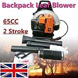 Immagine 1 btdahong leaf blower 65cc zaino