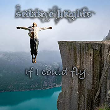 If I could fly