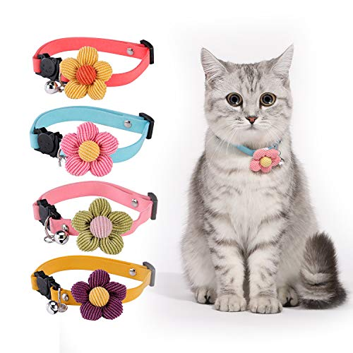 Cat Collar Breakaway with Bell, Personalized...