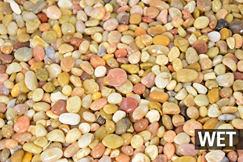 30 Lbs Large Salmon Bay Pebbles for Bonsai Tree Humidity Tray & Lucky Bamboo