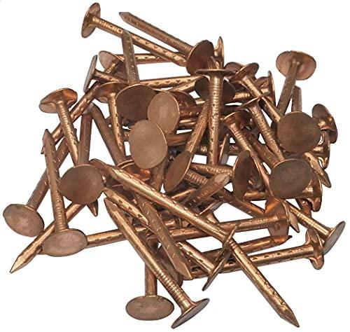 AERZETIX - Juego de 50 - Clavos con cabeza plana ancha puntas - Ø2.5x30mm - en cobre - para chapa ondulada cubierta y revestimiento - DIN 10230 - C48523