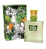 Lot de 2 ( 2 x 100ml ) - Parfum generique Femme Eiden EDT grande marque ( Livraison Gratuite )