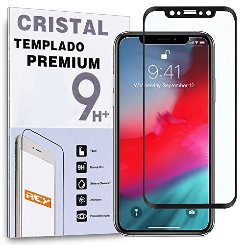 REY Protector de Pantalla Curvo para iPhone X, Negro, Cristal Vidrio Templado Premium, 3D   4D   5D