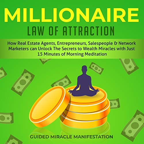 Millionaire Law of Attraction cover art