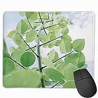 春の緑葉 マウスパッド 25×30 大判 ノンスリップ 防水 ゲーミング おしゃれ マウスの精密度を上がる