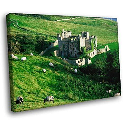 JXFFF Kein Rahmen 40x50cm 3D HD Leinwanddruck Landschaftsgrafikdruck Clifden Castle Irisches Gras Schaf Wandkunst Leinwandbild für Innenhof Wanddekoration Poster