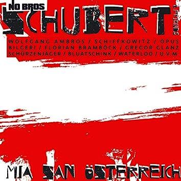 Mia san Österreich (Austro Pop Version)