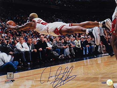 Mingki Dennis Rodman Fly (1997) Chicago Bulls Premium Poster - 18 × 24 Inch