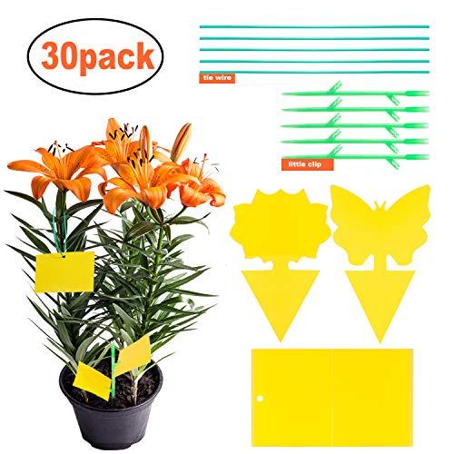 YHmall 30 Stück Fliegenfalle Gelbstecker, Gelbsticker, Insektenfalle Leimfallen zum Schutz von Zierpflanzen MEHRWEG