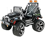 Peg Perego - OD0501 - véhicule Miniature - Gaucho Superpower - 24V