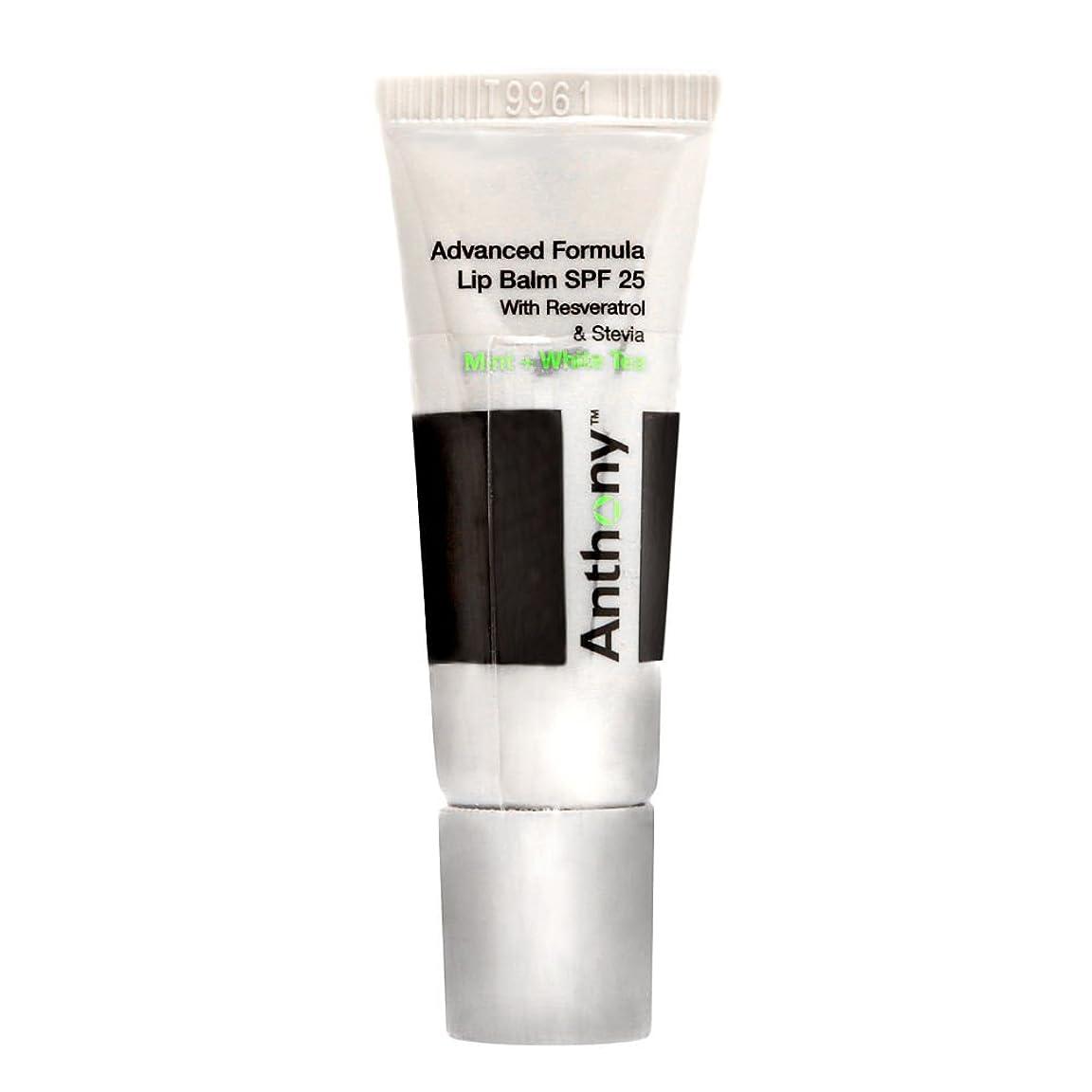 ジョガーきちんとした蒸留するアンソニー Logistics For Men Advanced Formula Lip Balm SPF 25 - Mint And White Tea 7g/0.25oz並行輸入品