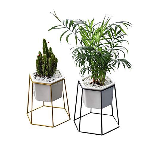 AQUYY keramiek vlezige vaas interieur met geometrische zeshoekige ijzeren plank, Scandinavische moderne minimalistische bloempot, Bureau, vensterbank, woonkamer decoratie