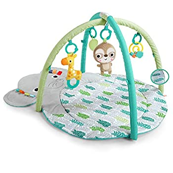 Bright Starts Hug  N Cuddle Activity Gym & Playmat with Take-Along Toys