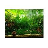 Decoración de pecera para acuario, imagen de fondo de PVC adhesivo, estilo hierba acuática, decoración de papel adhesivo