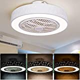 WJJH Luces y Control Remoto, Regulable Ventilador Techo 220V Compatible conGoogle para recámara, Sala de Estar, plástico acrílico, Ceiling Fan Light,Blanco