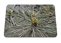 22cmx18cm マウスパッド (小ぎれいなな枝いばら芽) パターンカスタムの マウスパッド