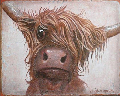 Panneau en bois imprimé vache écossaise Highland par Sean Aherne