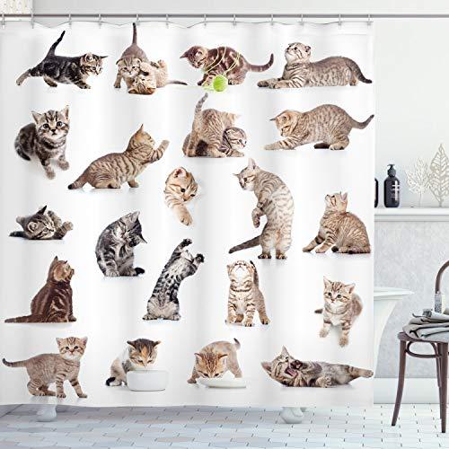 ABAKUHAUS Katze Duschvorhang, Lustige Spielerische Katzen Bild, Personenspezifisch Druck inkl.12 Haken Farbfest Dekorative mit Klaren Farben, 175 x 180 cm, Braun Schwarz Weiß