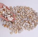 Hisredsun 2 Pounds Decorative Stones River Pebbles for Flowerpot, Garden and Aquarium Decoration (White)