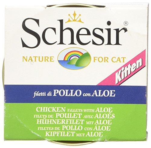 Schesir Gato 85 gr Kitten Pollo con Aloe ✅