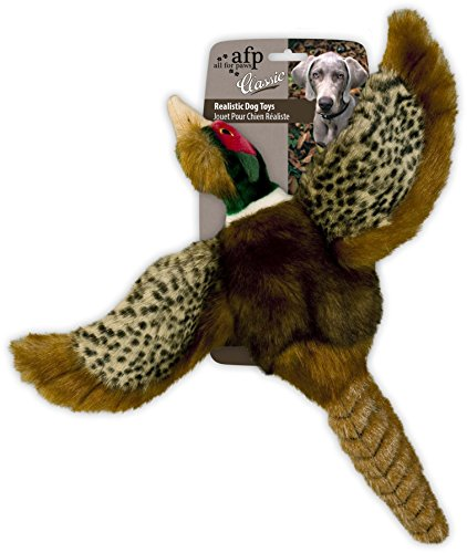 AFP AFPH04005 Hundespielzeug Pheasant, S