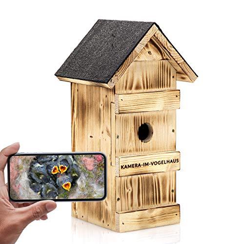 Nistkasten mit WLAN Kamera Fiedler - Bequem Vögel bei der Brut beobachten (Android, iOS, PC, HD-Auflösung, Nachtsicht, Ton, Videos aufnehmen)