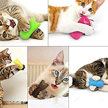 O-Kinee Jouet en Peluche Cataire Jouets Chat Herbe à Chat,Pet Supplies Chat à Mâcher et à Nettoyer Les Dents,Jouets Naturels pour Chat pour Tous Les Chats et Chatons Appropriés (5 Couleurs)